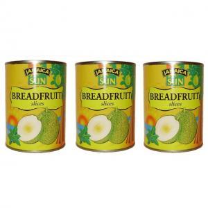 AAA - Brotfrucht - Dose 540g